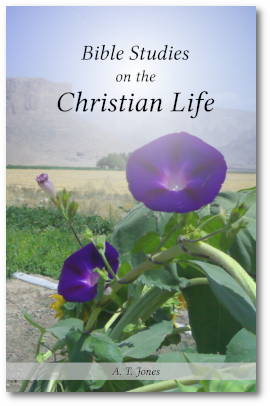 Bible Studies on the Christian Life