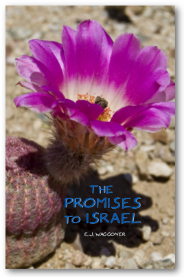 The Promises to Israel