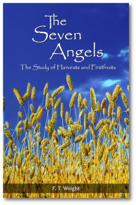 The Seven Angels